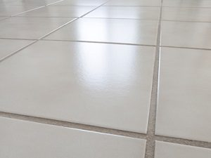 Grout Cleaning in Tampa FL