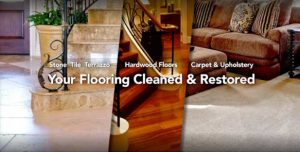 bayshore tampa flooring cleaned and restored